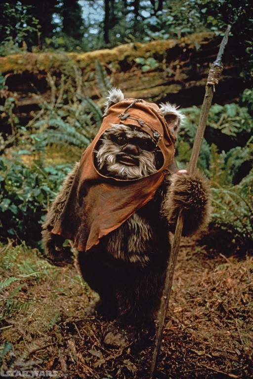 Star Wars Ewok