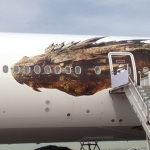 The Hobbit The Desolation Of Smaug Air New Zealand Aircraft Image 1