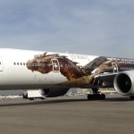 The Hobbit The Desolation Of Smaug Aircraft Image 6
