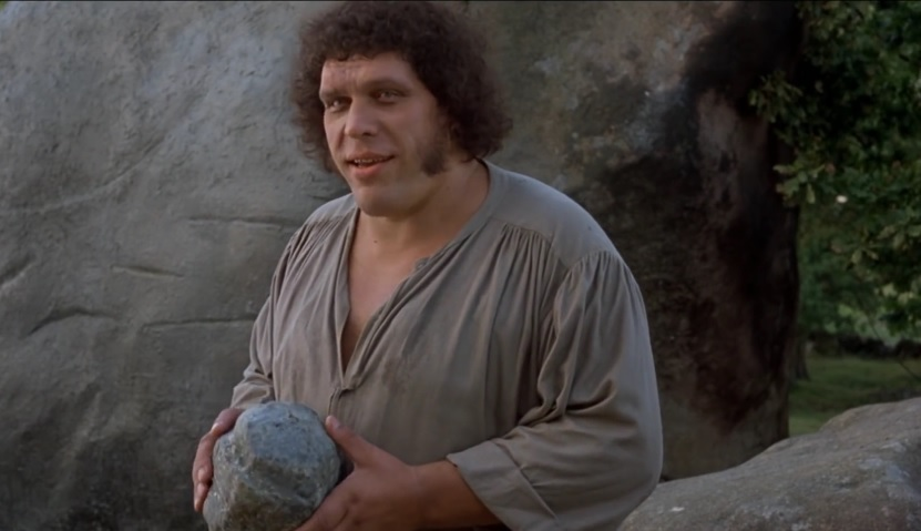 Movie About The Life Of Andre The Giant Being Developed